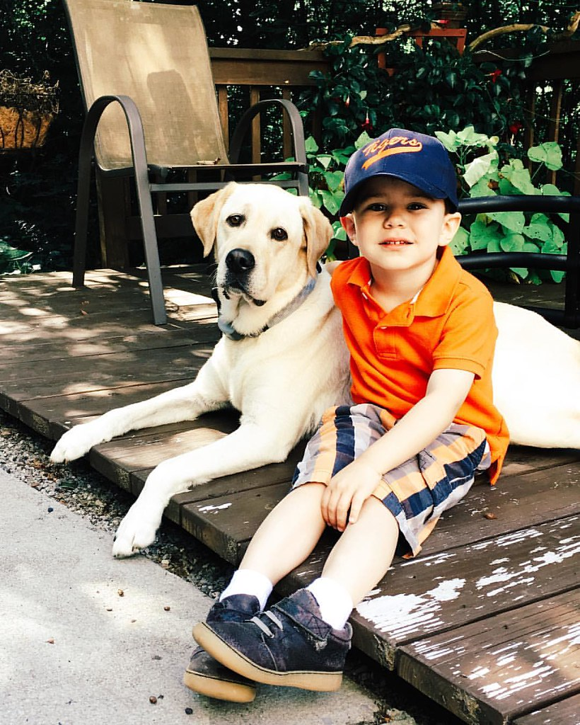 A boy and his dog. #instaluther #dogsofinstagram #yellowlab #labsofinstagram #childhood