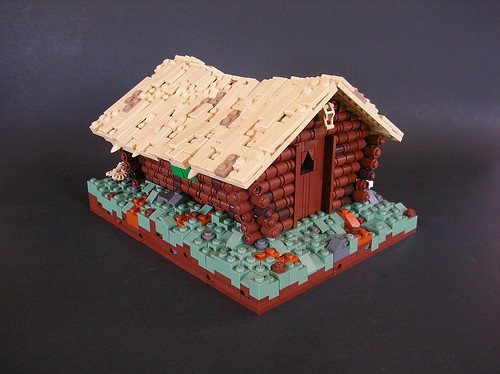 Cabin in the Hills 02