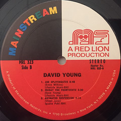 DAVID YOUNG:DAVID YOUNG(LABEL SIDE-B)