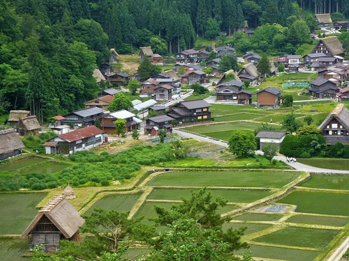 jp16-Shirakawa-go-montagne (4)