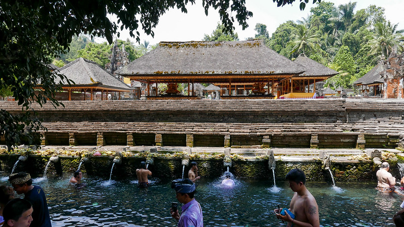 27937036340 ccb9868c75 c - The definitive guide to Food, Culture and Nature in Ubud, Bali (October 2015)