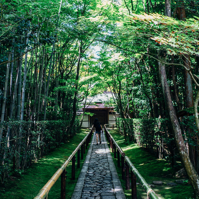 Kyoto_Koto-in_12