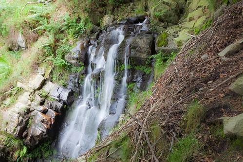 Parque Natural de #Gorbeia #DePaseoConLarri #Flickr - -7968