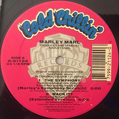 MARLEY MARL:THE SYMPHONY(LABEL SIDE-B)