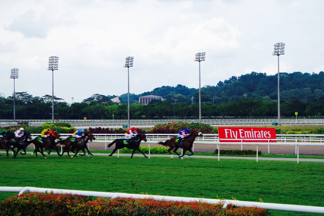 Emirates Singapore Derby 2016SAM_9744 13redfashion_yuki ng