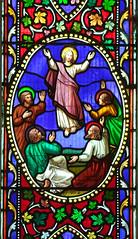 Trampolining Jesus (Charles Gibbs)