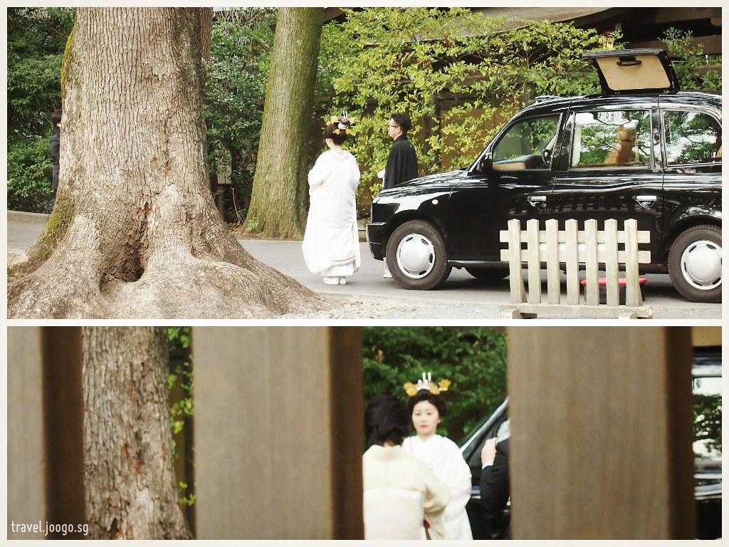 Meiji Jingu 8 - travel.joogo.sg