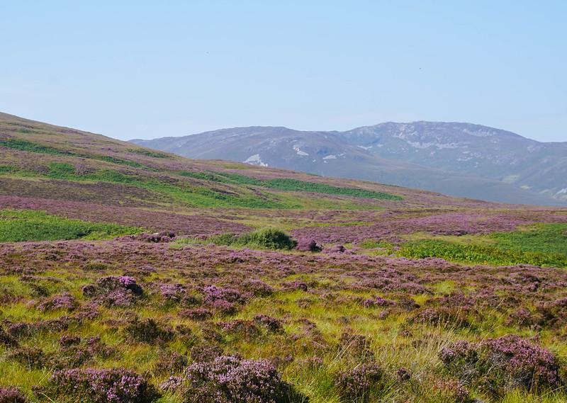 Scotland-64.jpg