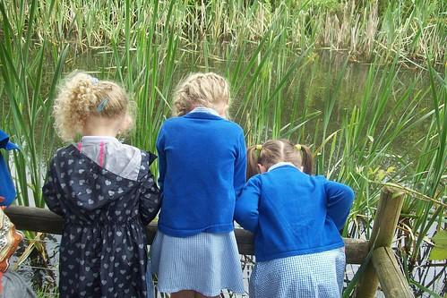 Pond dipping at Aston Springs Farm