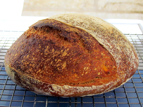 Sweet Potato Levain