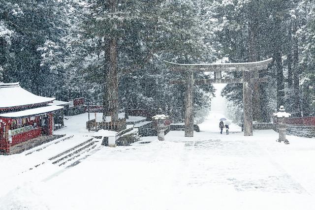 那些RX1走過的冬季 | 17 | 參道,雪飛舞