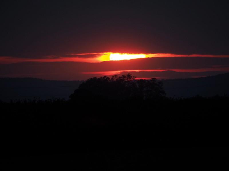 Sunset of Red eye