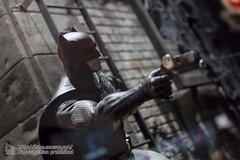 BATMAN100_HotToys_2-482