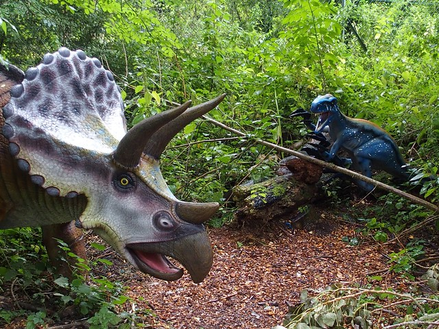 A close dino encounter