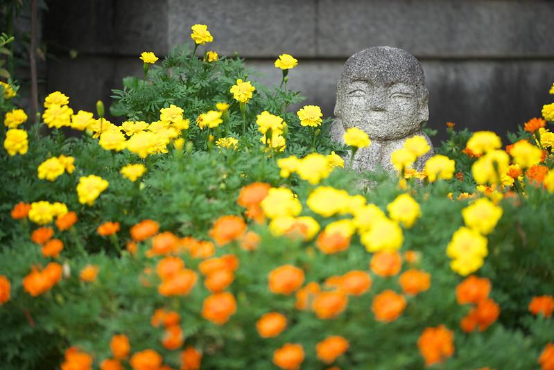 東京路地裏散歩 花とお地蔵さん 2016年8月13日