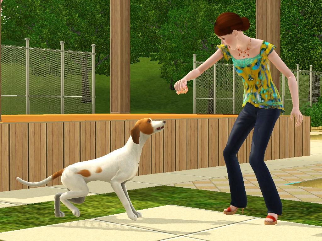 Sims  Dog Ran Away