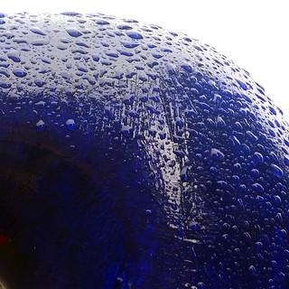 wet blue trunk