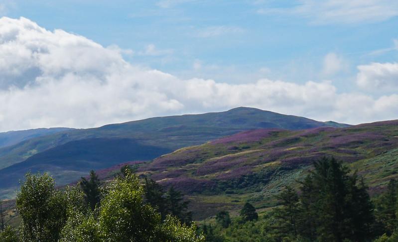 Scotland-39.jpg