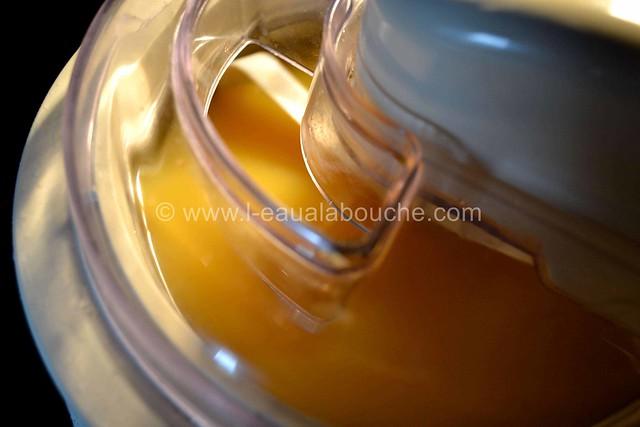 Granita à L'Orange © Ana Luthi  Tous droits réservés 002