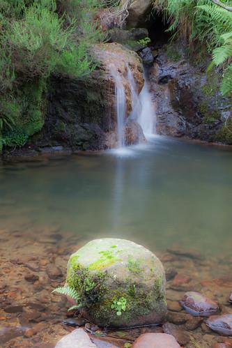 Parque Natural de #Gorbeia #DePaseoConLarri #Flickr - -7982