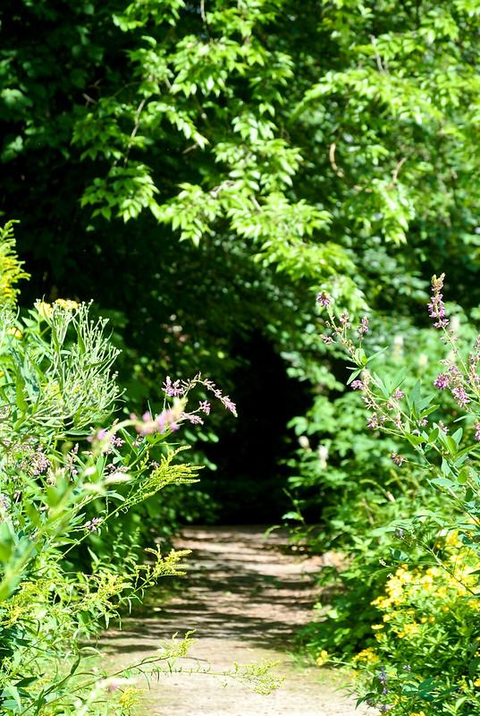 Botanischer Garten_2016-29